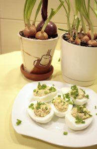 Jajka nadziewane pasta z tuńczyka