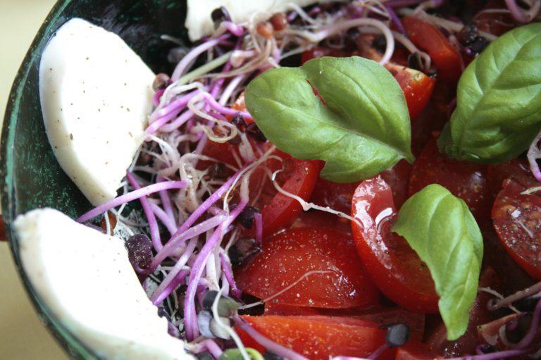 Sałatka z pomidorami, mozzarellą i kiełkami rzodkiewki